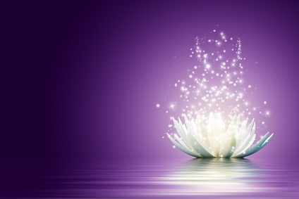 Purple background, to the right is a white lotus opening with glittery magic.