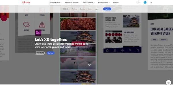 Adobe-XD-website