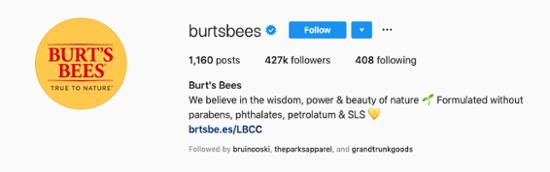 Burts-Bees-Instagram-Bio