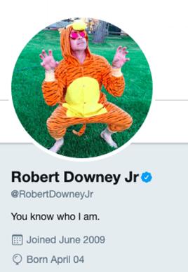RDJ-Twitter-Bio