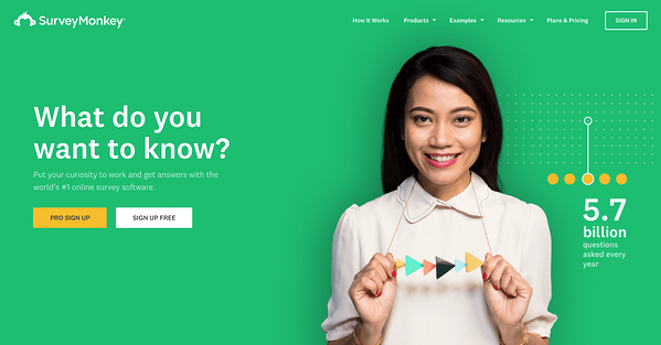SurveyMonkey is a well know online survey platform