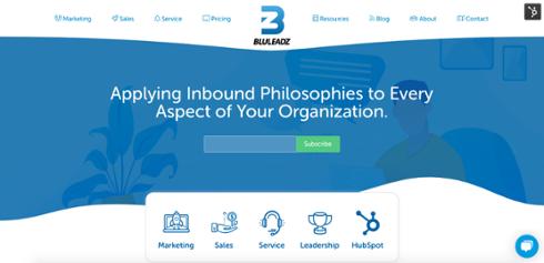 bluleadz-homepage-fold-design