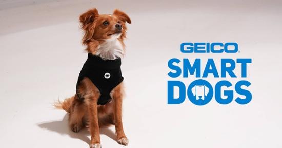 geico-facebook-ad