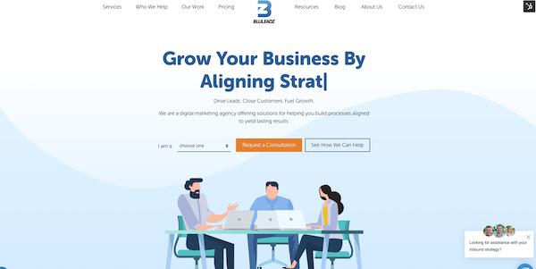 bluleadz-website-homepage