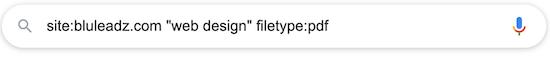 google-site-search-11