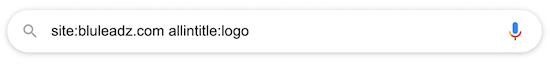 google-site-search-4
