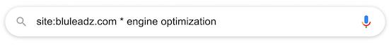 google-site-search-6