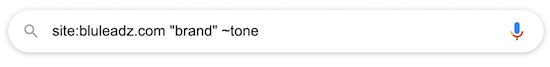 google-site-search-7