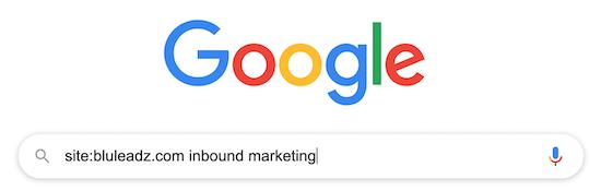 google-site-search-bluleadz