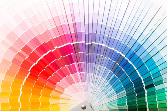 which_color_-1